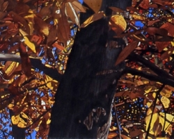 Autumn Leaves 20x70