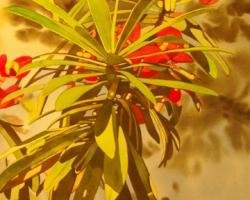 Oleander 2 15x22